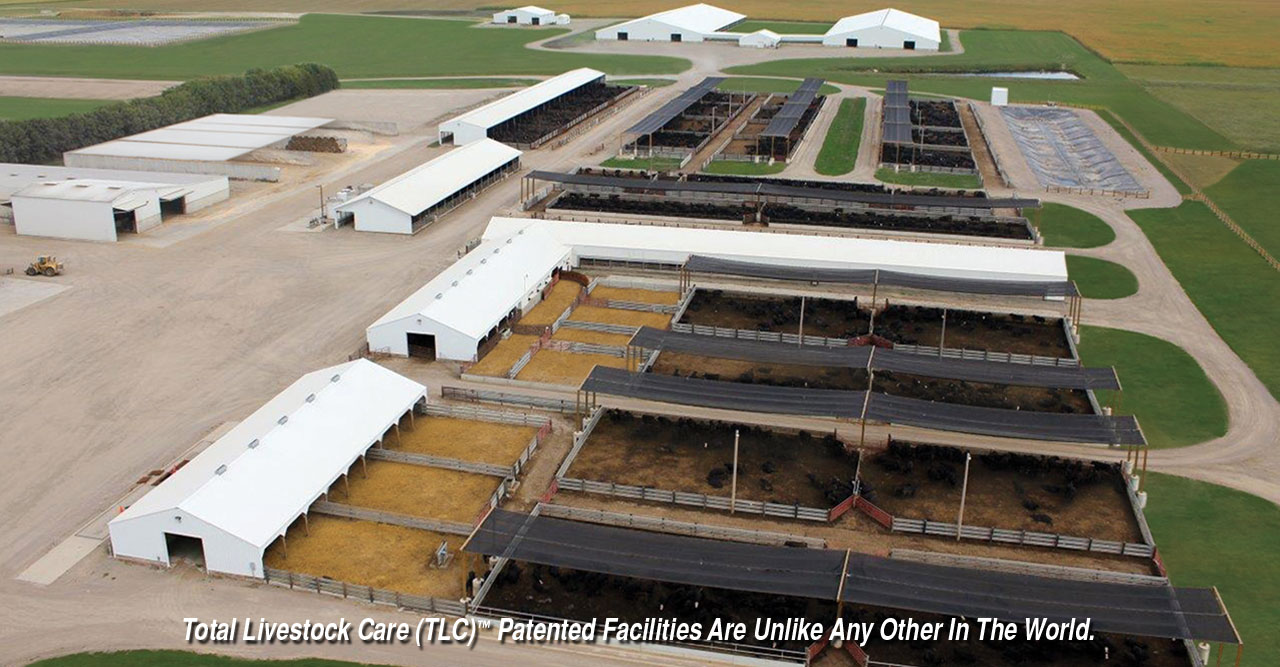 Rcc facilities revier cattle company for Rcc home show